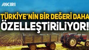 Türkiye'nin 94 yıllık değeri TÜRKŞEKER özelleştiriliyor!