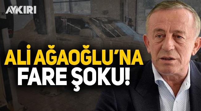 Ali Ağaoğlu'nun arabasını fareler kemirdi