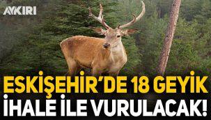 Eskişehir'de 18 geyik ihale ile vurulacak