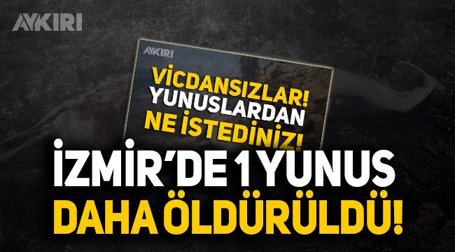 İzmir'de öldürülen yunus sayısı 4'e çıktı