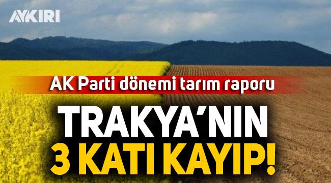 AK Parti dönemi tarım raporu: Trakya'nın 3 katı kayıp