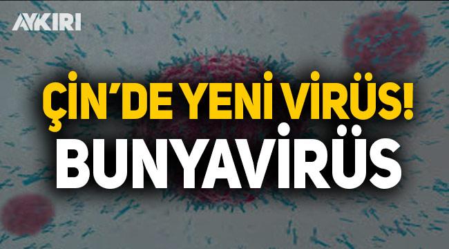 Çin'de koronavirüs bitmeden bunyavirüs çıktı