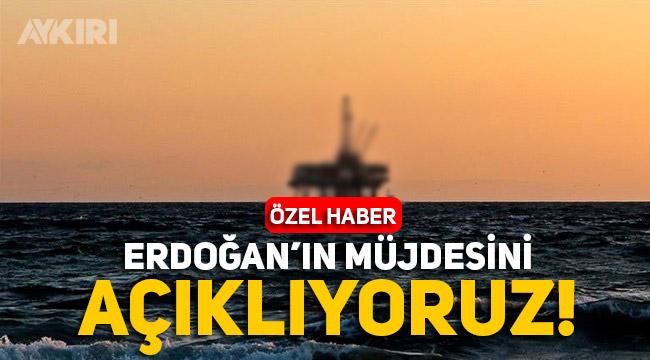 """Erdoğan'ın müjdesini açıklıyoruz: """"Karadeniz'de doğal gaz bulundu"""""""