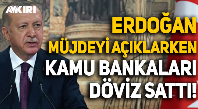 Erdoğan müjdeyi açıklarken kamu bankaları döviz sattı