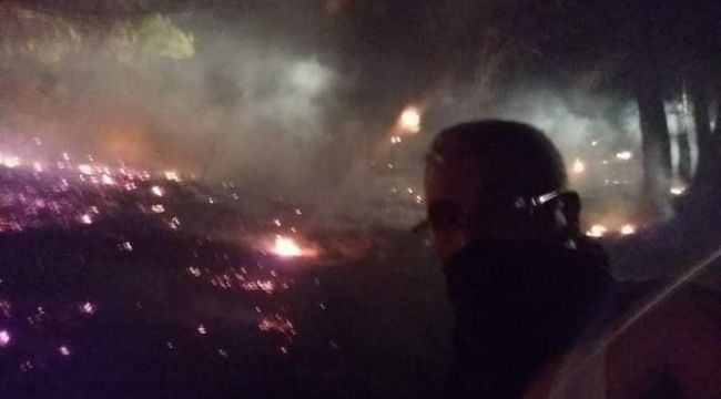 Kazdağları'nda orman yangını: 0.5 hektar ağaç kül oldu