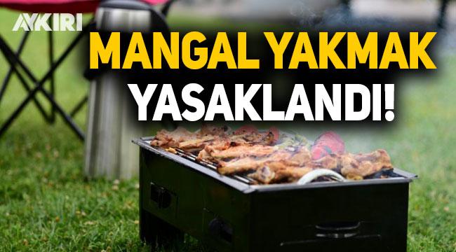 İstanbul'da mangal yakmak yasaklandı