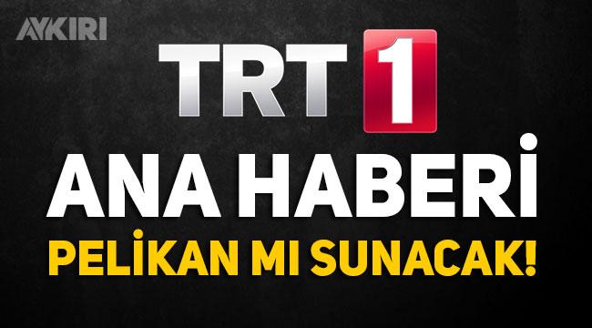 Pelikan'a yakınlığıyla bilinen Ersoy Dede, TRT Ana Haber'i sunucak