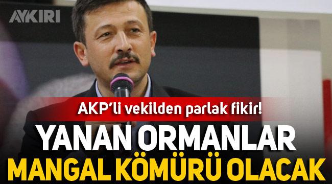 AKP'li Hamza Dağ'dan orman yangınları sonrası parlak fikir: Mangal kömürüne dönüştürülecek