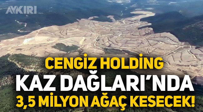 Cengiz Holding'in maden şirketi Kazdağları'nda 3,5 milyon ağaç kesecek