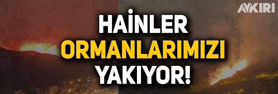 Türkiye'de birçok ilde orman yangını: Trabzon, Hatay, Kahramanmaraş, Osmaniye...