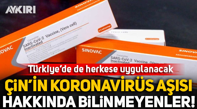 Türkiye'de de kullanılacak olan Çin'in koronavirüs aşısı CoronoVac ile ilgili bilinmeyenler