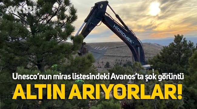 Avanos'a altın arama bahanesiyle iş makineleri girdi
