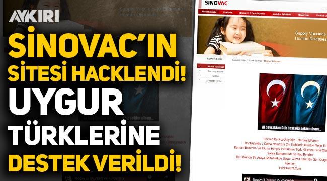 Sinovac'ın sitesi hacklendi! Çin zulmüne uğrayan Uygur Türklerine destek verildi