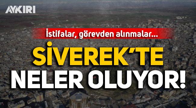 Siverek'te neler oluyor? Belediye başkanı istifa etti, üst düzey görevden alınmalar yaşandı!