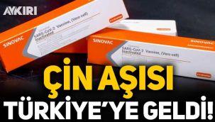 Çin aşısı Türkiye'ye geldi! Uçak İstanbul Havalimanı'na indi