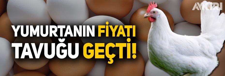Yumurtanın fiyatı tavuğu geçti!