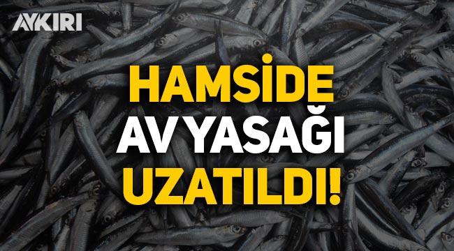 Hamside av yasağı 28 Ocak'a uzatıldı