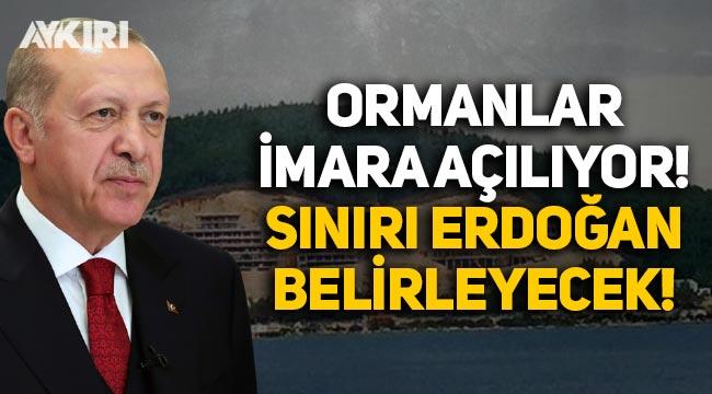 Ormanlar imara açılıyor, sınırı Erdoğan belirleyecek