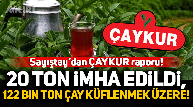 Sayıştay'dan Çaykur raporu: 20 ton çay imha edildi, 122 bin ton çay küflenmek üzere!
