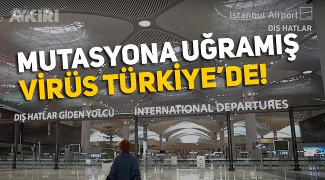 Son dakika haberi... Yeni tip, mutasyona uğramış koronavirüs Türkiye'de görüldü