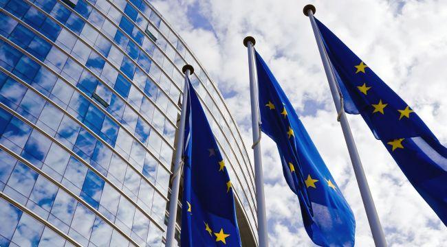 Avrupa Birliği ülkelerinin liderleri koronavirüs zirvesi yapacak