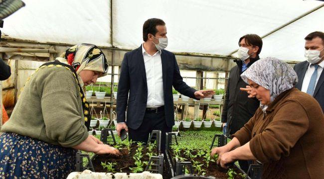 Ankara'da sözleşmeli çiçek üreticiliği dönemi