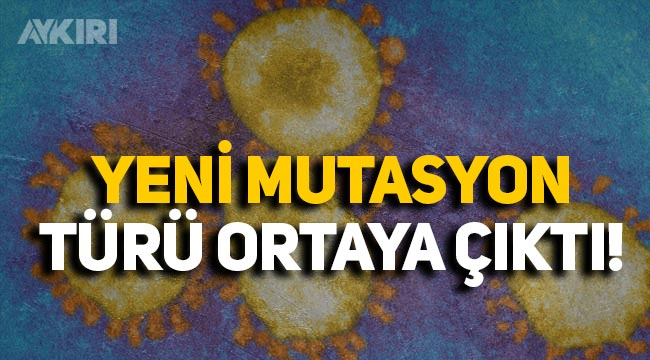 Fransa'da yeni koronavirüs mutasyonu tespit edildi