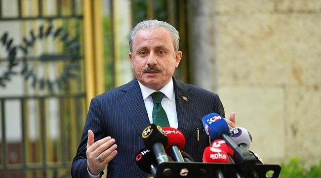 Şentop'dan 'Gergerlioğlu'nun Meclis'te gözaltına alınması hakkında açıklama