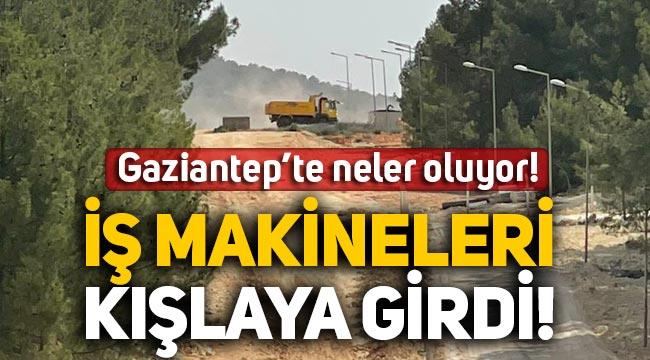 Gaziantep'te neler oluyor! Askeri alan el değiştirdi, ağaç katliamı başladı