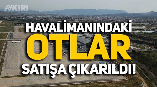 Havalimanı sahasındaki otlar satışa çıkarıldı, piyasa değeri 3 bin TL