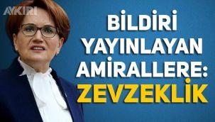 Meral Akşener'den bildiri yayınlayan emekli amirallere: Zevzeklik