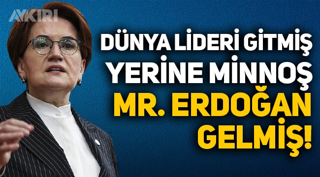 Meral Akşener: Rüzgar esse atarlanan dünya lideri gitmiş, yerine minnoş Mr. Erdoğan gelmiş