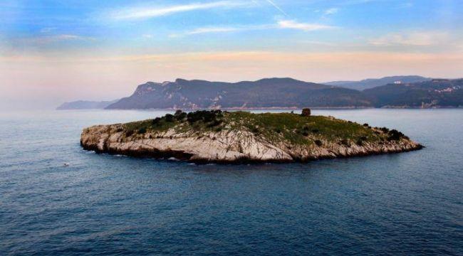 """Resmi gazetede yayımlandı; Tavşan Adası, """"kesin korunacak hassas alan"""" ilan edildi!"""