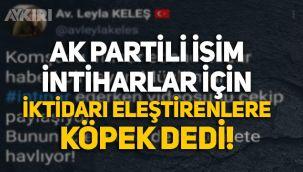 AK Partili Meclis Üyesi, intiharlardan dolayı iktidarı eleştirenlere 'köpek' dedi!