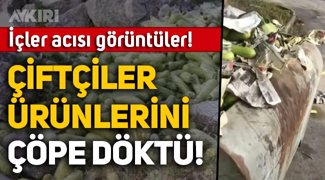 Antalya'da içler acısı görüntüler: Çiftçiler, ürünleri çöp arabası ve konteynırlarına döktü!