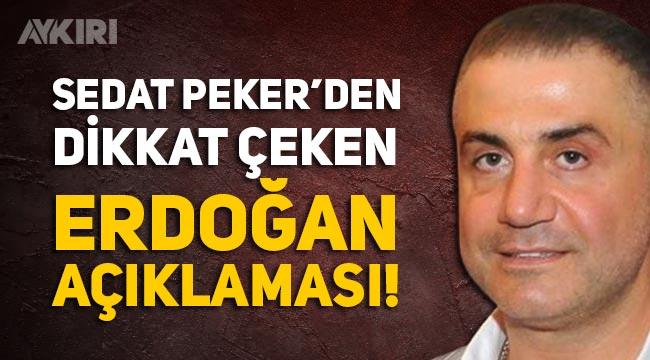 Sedat Peker'den Erdoğan açıklaması: 1999 yılından beri tanışıyoruz