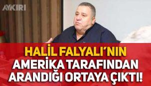 Sedat Peker'in bahsettiği Halil Falyalı'nın ABD tarafından arandığı ortaya çıktı!