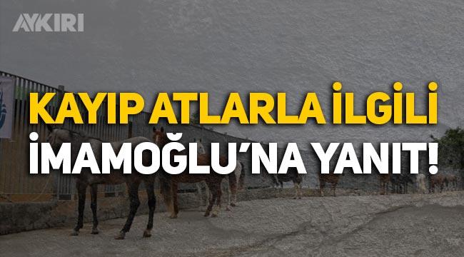 Tarım ve Orman Müdürlüğü'nden Ekrem İmamoğlu'na 'kayıp atlar' cevabı