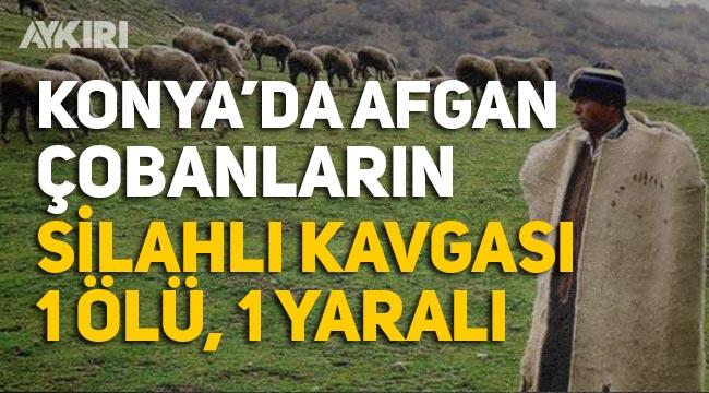 Afgan çobanlar birbirine girdi: Tüfekle öldürdü!