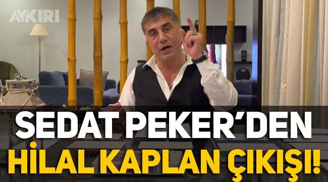 Sedat Peker'den Hilal Kaplan çıkışı!