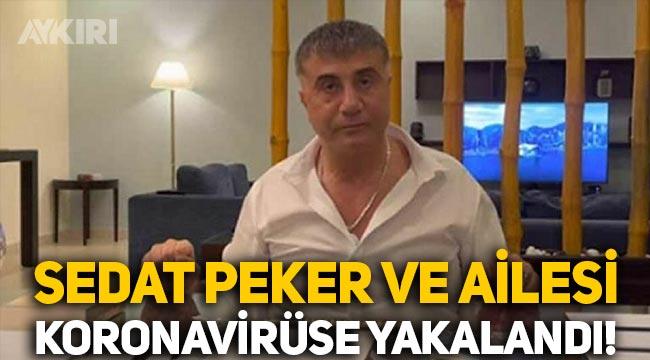 Sedat Peker ve ailesi koronavirüse yakalandı iddiası