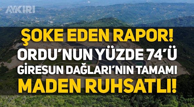 Şok rapor: Ordu'nun yüzde 74'ü, Giresun Dağları'nın tamamı maden ruhsatlı!