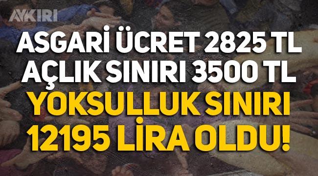 Türkiye'de açlık sınırı 3 bin 500, yoksulluk sınırı 12 bin 195 lira oldu