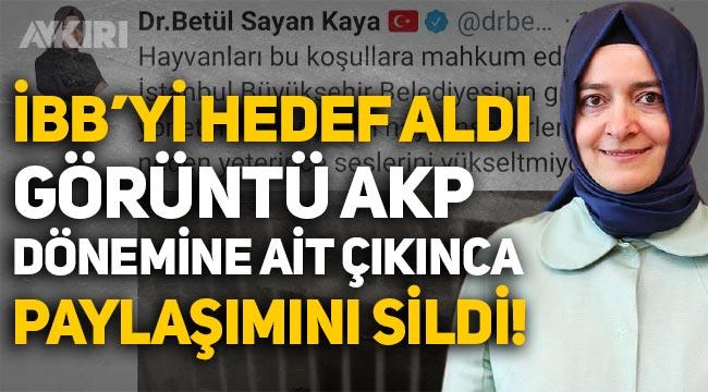 AKP'li Betül Sayan Kaya, İBB'yi hedef aldı, görüntü AKP dönemine ait çıkınca paylaşımı sildi!
