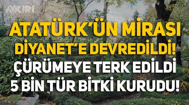 Atatürk'ün mirası Diyanet'e devredildi, bakımsızlıktan çürüdü!