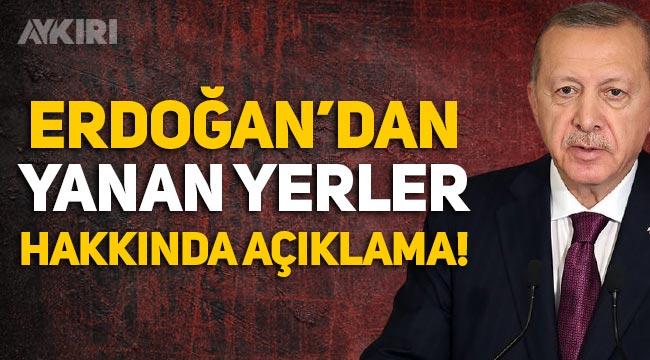Erdoğan'dan yanan alanlar hakkında açıklama