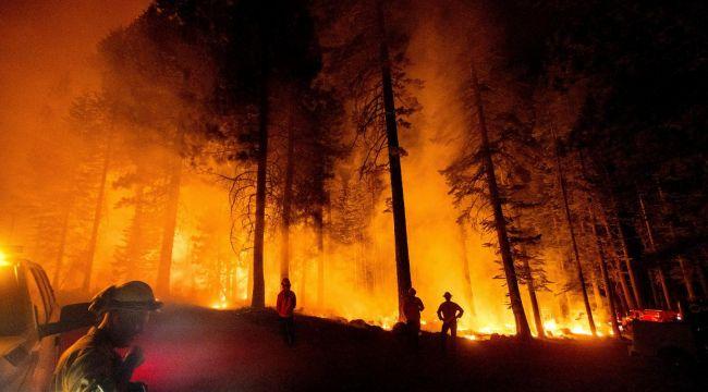Orman yangınları belediyelerin ekonomilerini vurdu: 35-100 milyon arası ek harcama