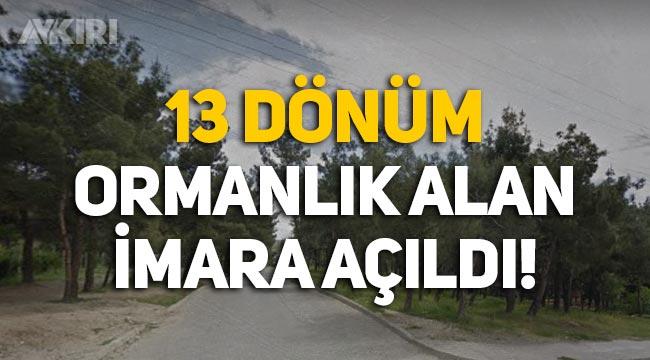 Sinop'ta 13 dönümlük ormanlık alan imara açıldı: Emniyet binası ve lojman yapılacak
