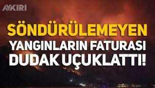 Türkiye'deki orman yangınlarının faturası belli oldu!