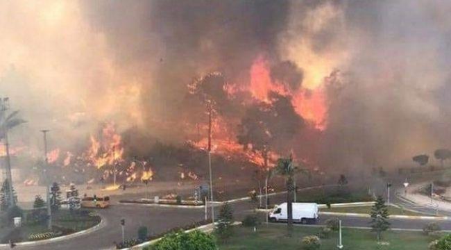 Yangın fırsatçılığı hakkında Ticaret Bakanlığından açıklama!